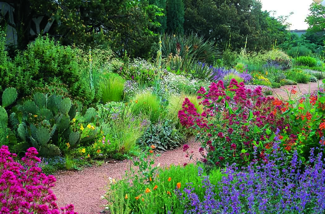 """""""Plant Driven Design"""" Sides with Real Gardeners (met"""