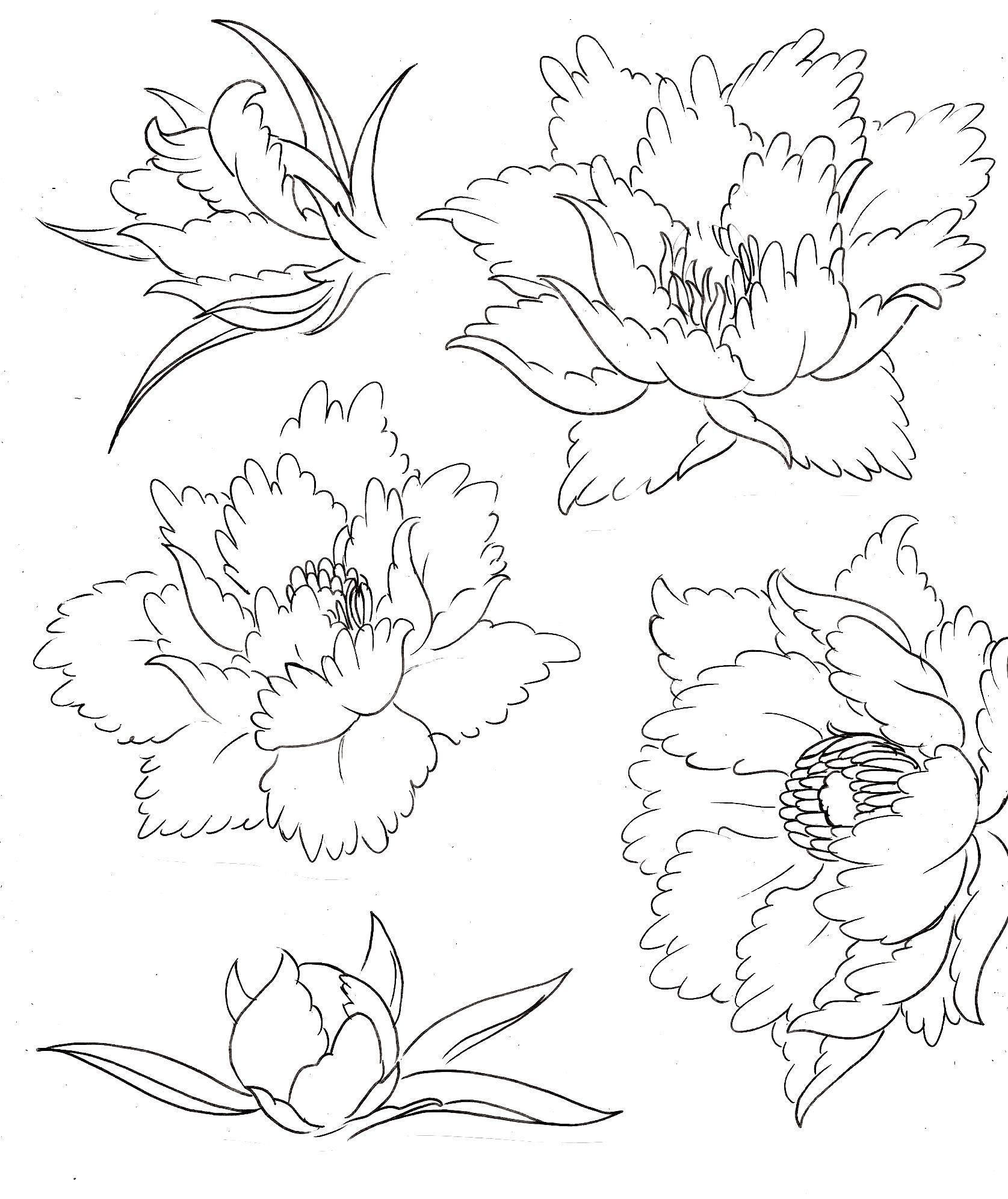 40 Id�es De Mod�le De Tatouage à Motifs Diff�rents €� Gratuit Peony Flower  Tattoospeonies Tattoojapanese