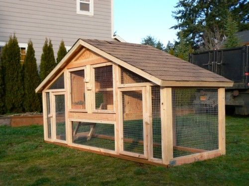 Cute Little Chicken Coop Chickens Backyard Chicken Coop Plans Chicken Coop Designs