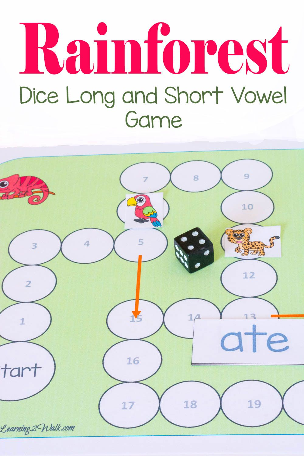 Rainforest Dice Long and Short Vowel Reading Game | Short vowels and ...