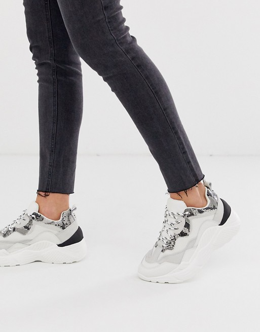 Fértil Inútil Excretar  Steve Madden Antonia chunky trainers in snake mix | ASOS in 2020 | Trainers  women, Black and white trainers, Steve madden