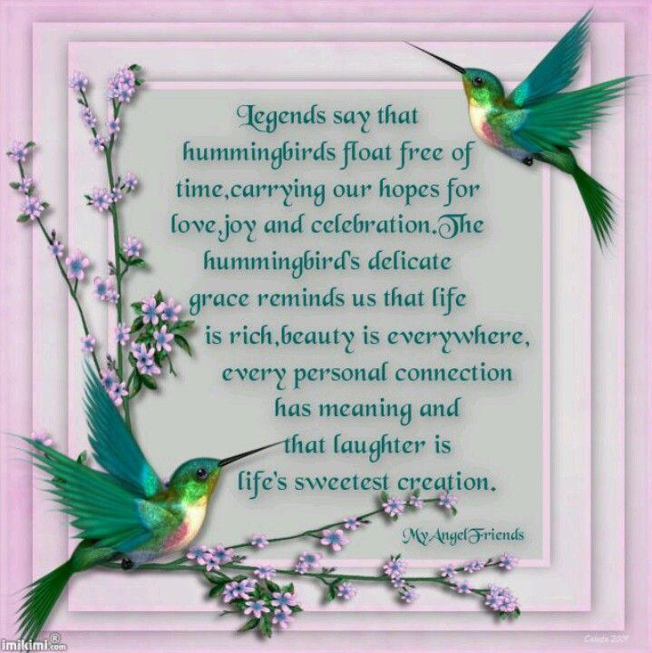 Hummingbirds Hummingbird quotes, Hummingbird symbolism
