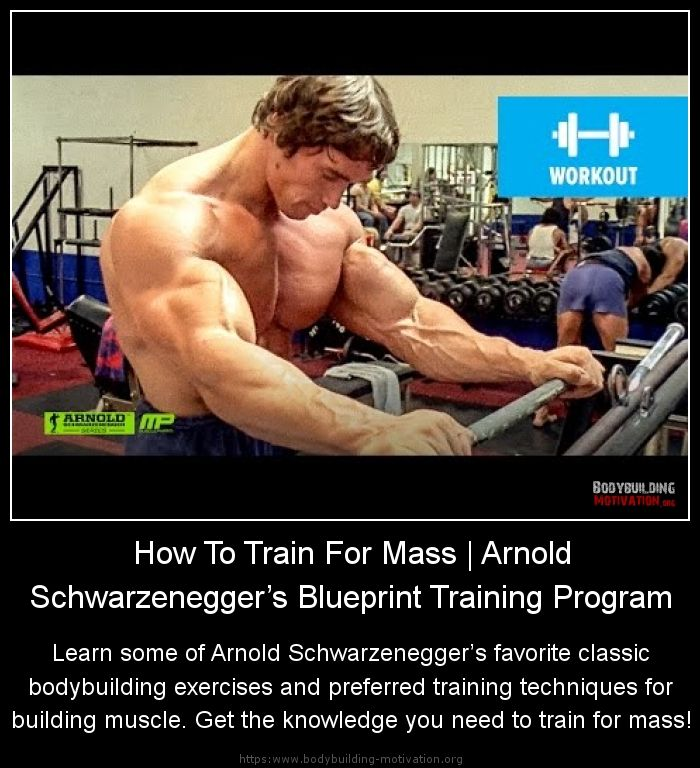 How to train for mass arnold schwarzeneggers blueprint training how to train for mass arnold schwarzeneggers blueprint training program learn some of arnold schwarzeneggers build musclemuscle malvernweather Images