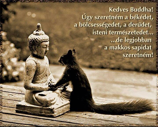buddha idézetek képekkel buddha idézetek magyarul   Google keresés   Buddha wisdom, Spanish
