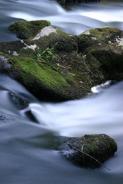 Agua... tierra...