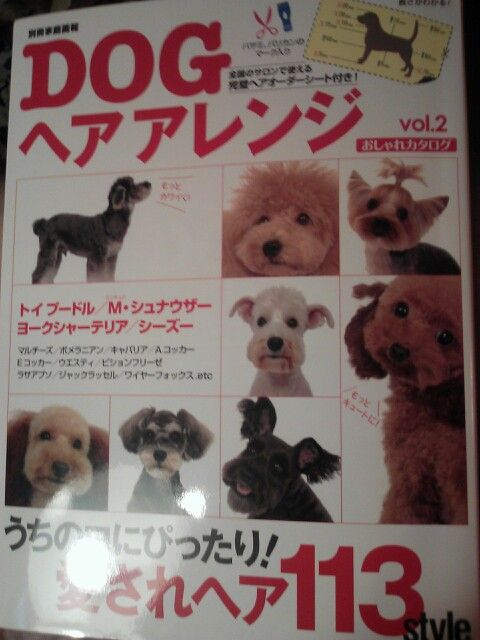 Asian Dog Grooming Book Dog Grooming Diy Asian Dogs Puppies Funny