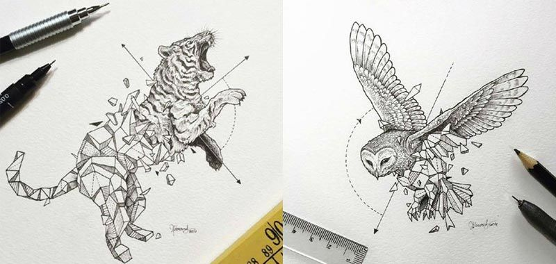Pin by Yvonne on cartoon | Wild animals drawing, Drawings ...