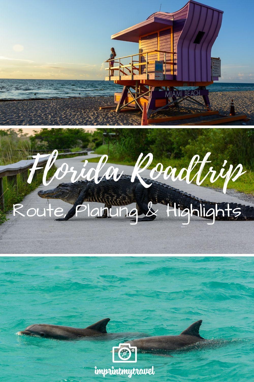 So planst du deine Traumreise nach Florida. Lies meine persönlichen Tipps und Empfehlungen, Routenvorschläge und Highlights für den Sunshine State der USA.
