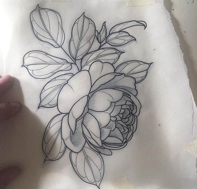 Pin de Gina en Just tattoo Pinterest Tatuajes, Flores y Ideas - tatuajes de rosas
