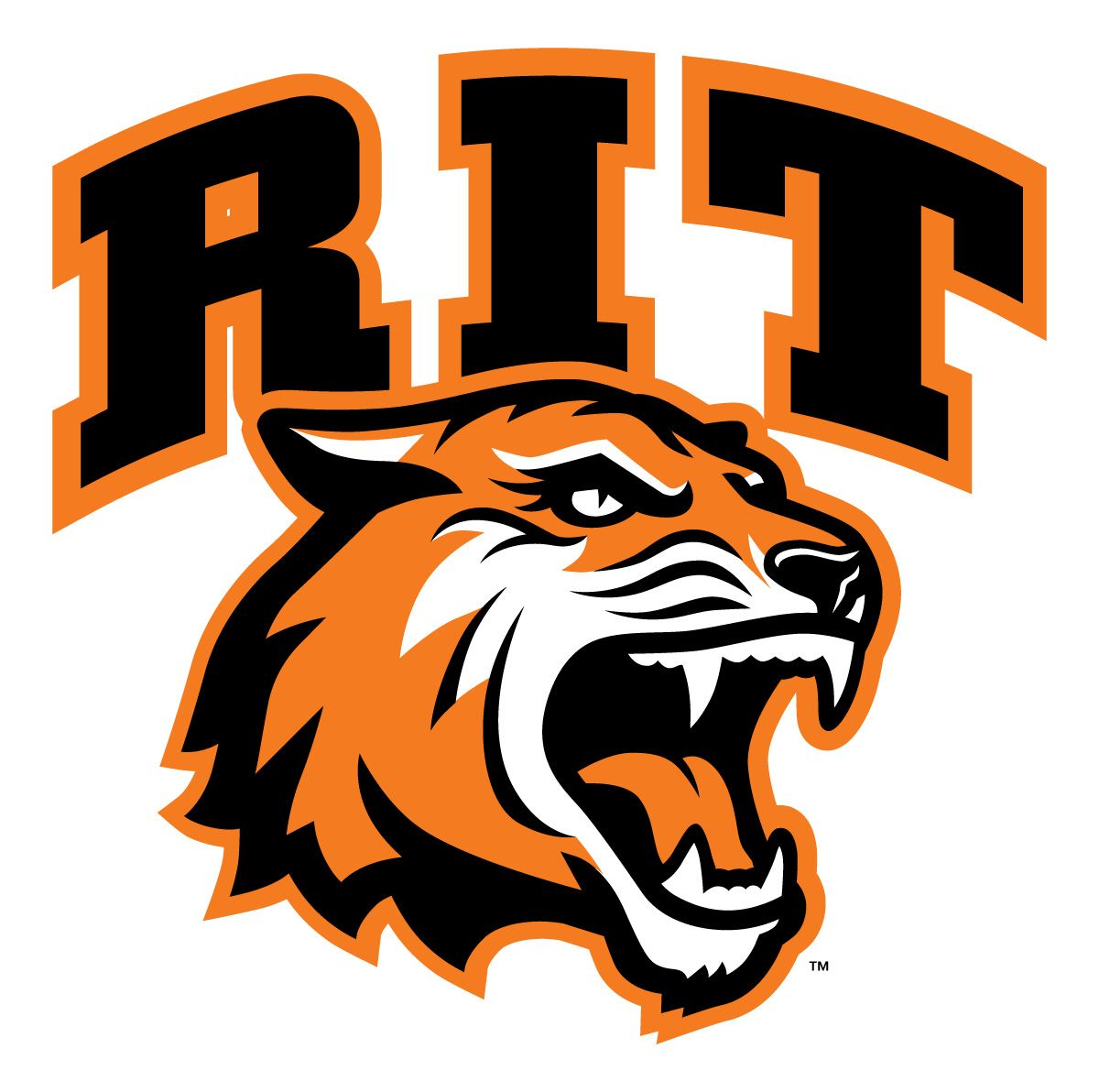 RIT Tigers Stickers : Design college ncaa sports iron ons and wall ...