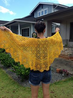 Dandelion On A Meadow Pattern By Lily Go Shawls Wraps And Other