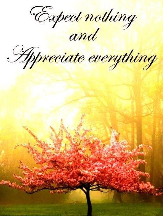 Expect Nothing And Appreciate Everything Quote Via Carolu0027s Country Sunshine  On Facebook