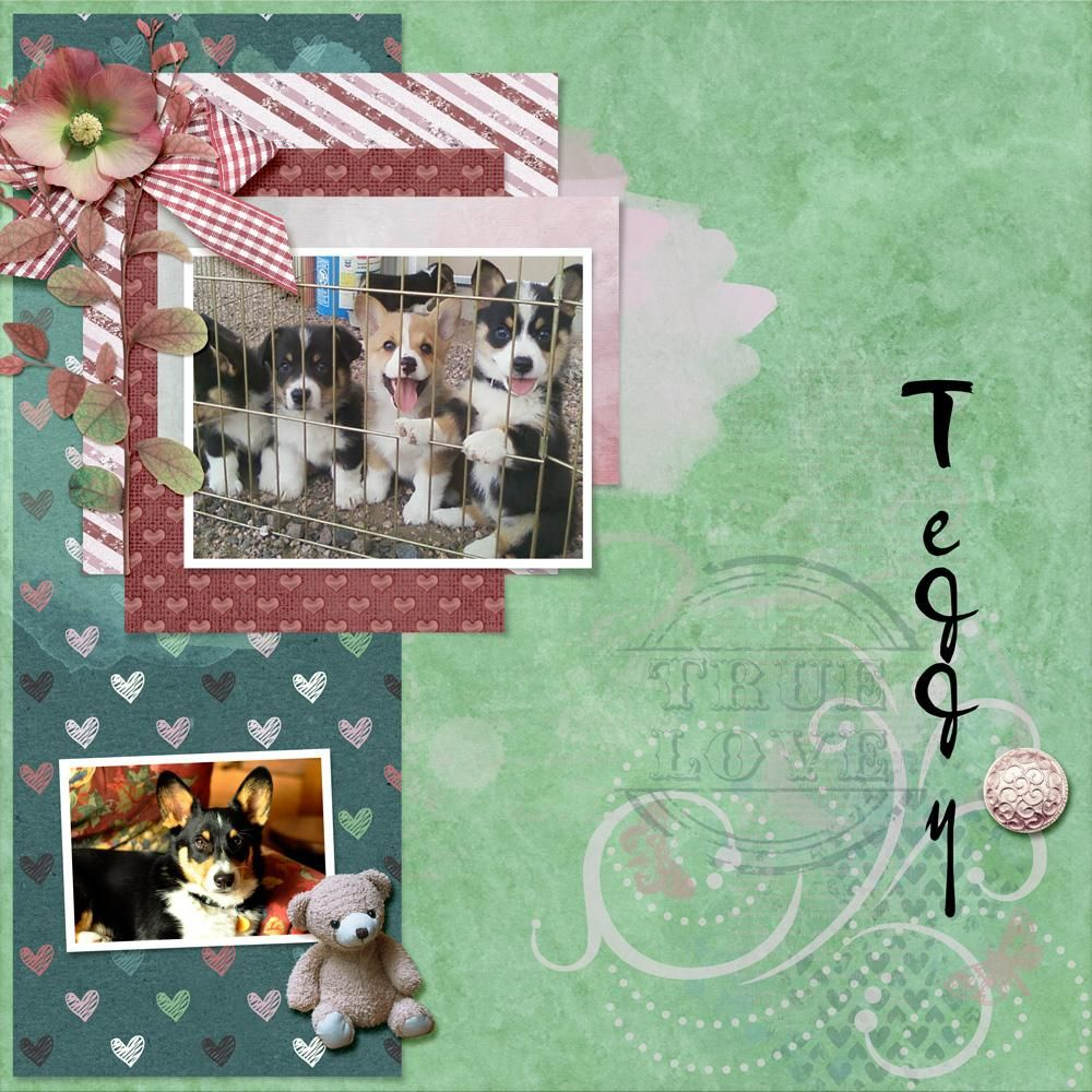 Zesty Designs - Here For You kit and Here for You Accents  Heartstrings Scrap Art - A Little Bit Arty 3