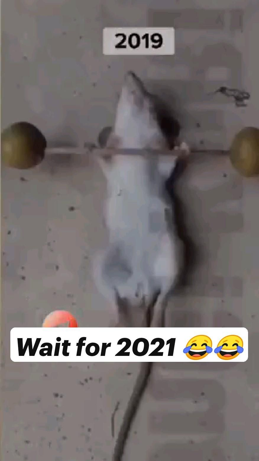 Wait for 2021 😂😂