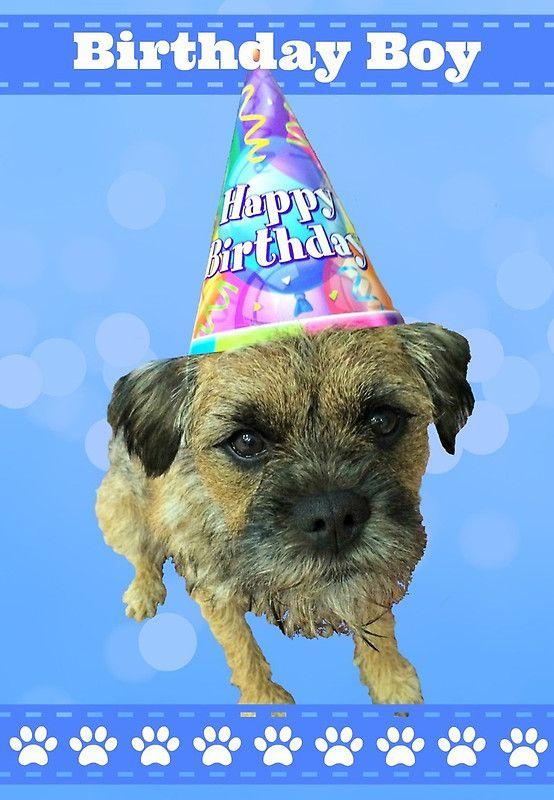Border Terrier Birthday Boy Card Blue Greeting Card By Scruffylt Boy Birthday Border Terrier Dog Gifts
