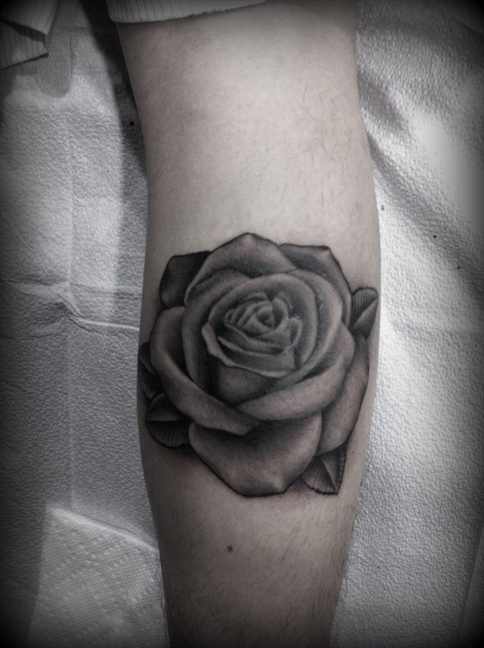 Black And Grey Tattoo Stencil: Black And Grey Rose--do Purple Shades With Grey Leaves