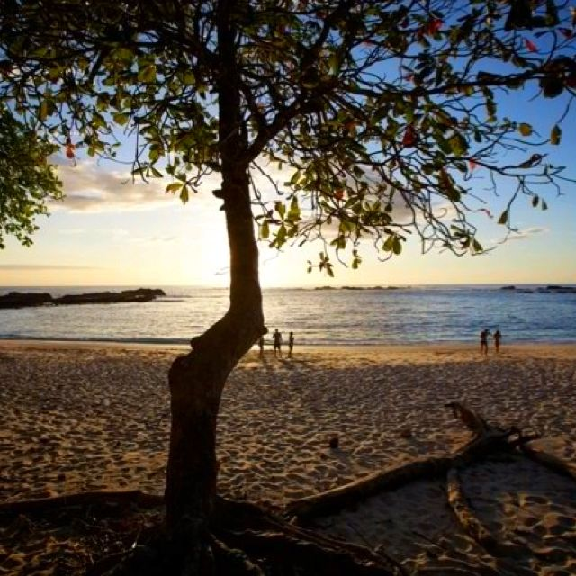 Favorite Places, Outdoor, Beach