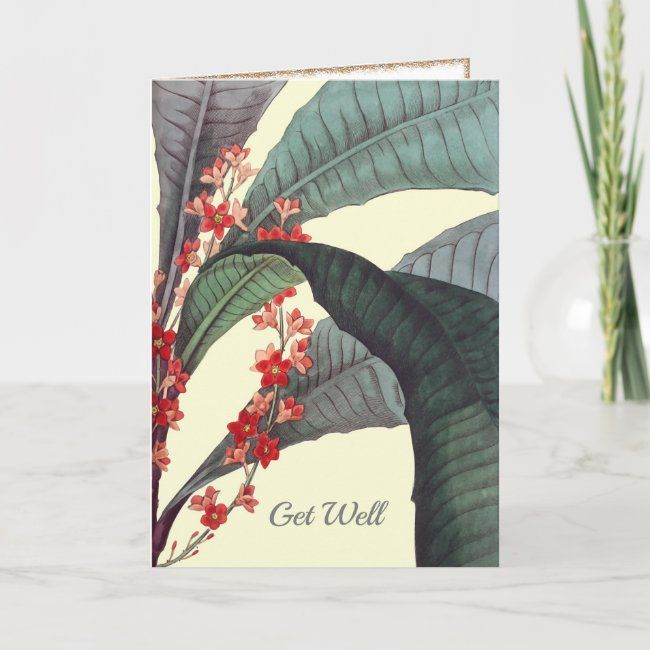 Tropical Flowering Get Well Card #zazzlemade #get #well #tropical #flowers#botanical #gifts #gardenstyle #flowers #vintage #floral
