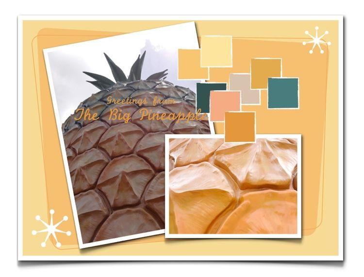 Greetings from The Big Pineapple :) Rubykite Interiors