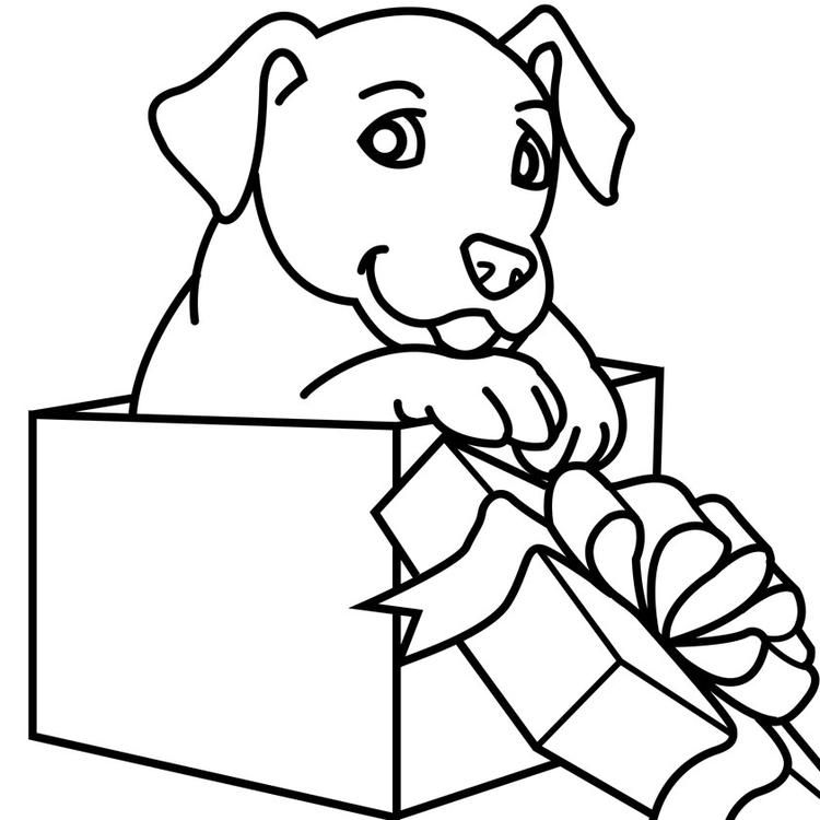 Simple Christmas Dog Coloring Pages Puppy Coloring Pages Dog Coloring Page Cute Coloring Pages