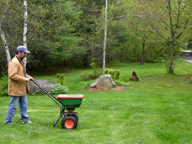 Best Grass Fertilizing Tips Lawn Care Tips Lawn Fertilizer Lawn Care Fall Lawn Care