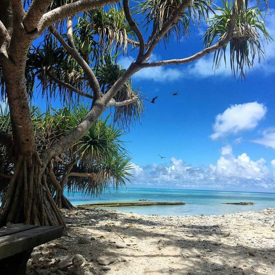 Fraser Island Australia: Pin By Nola Weiss On Water