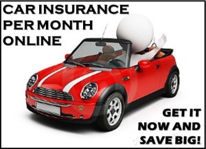 Average Car Insurance Quotes Per Month For New Drivers Online