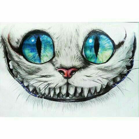 Pin Von Liv Neu Auf Zeichnen Cheshire Cat Zeichnung Bunte