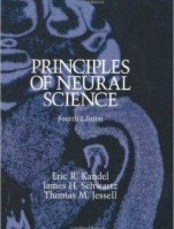 Of neural pdf principles edition science 5th