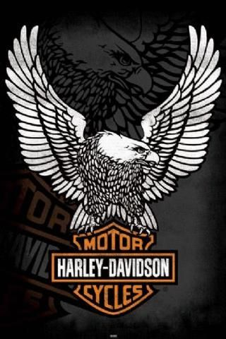 Harley Davidson Wallpapers Screensavers Free Wallpaper Iphone 5 Emblem Pictures