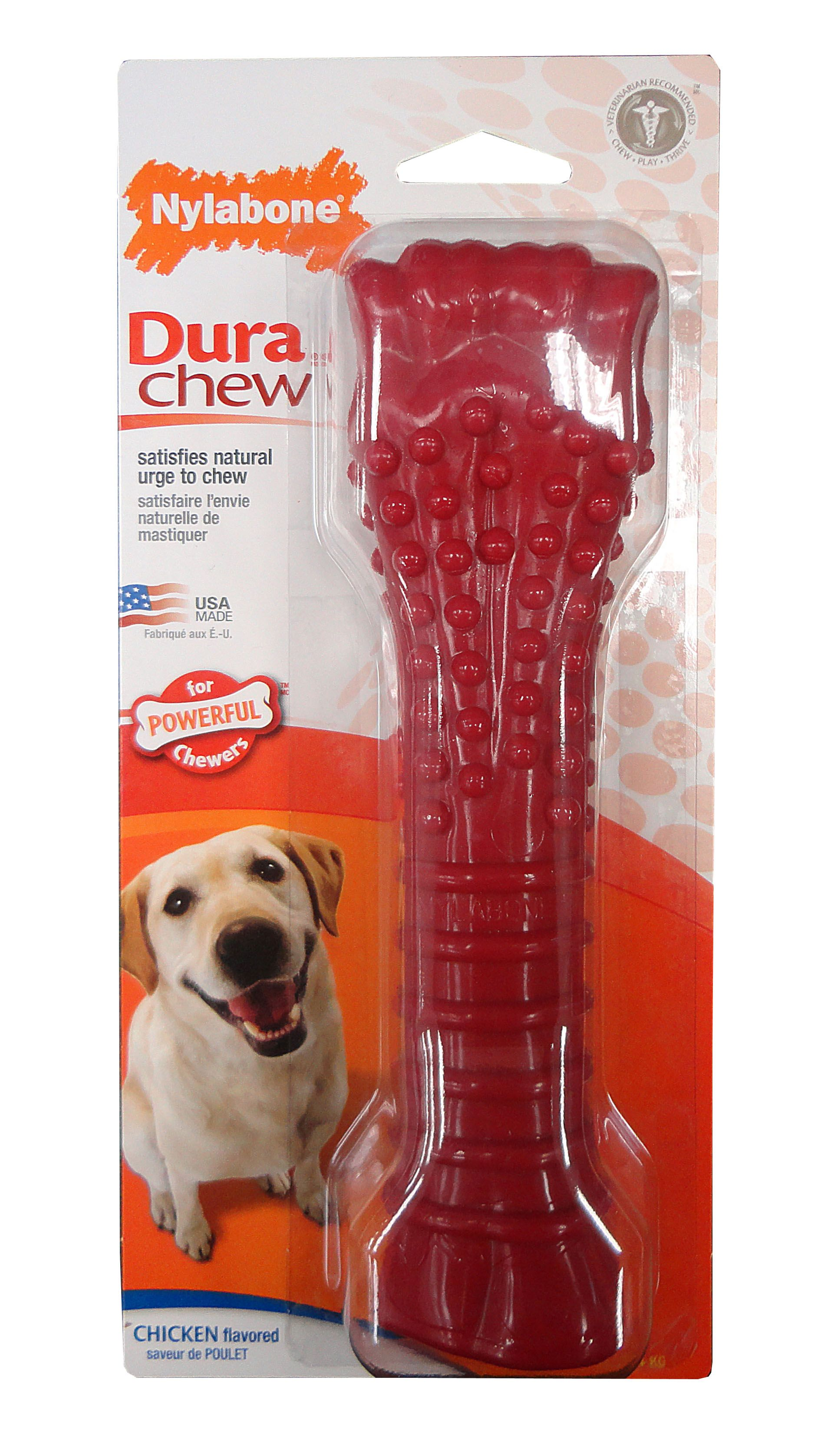 Flash Coupon Print Out A 3 Off Any Nylabone Dura Chew Toy Http