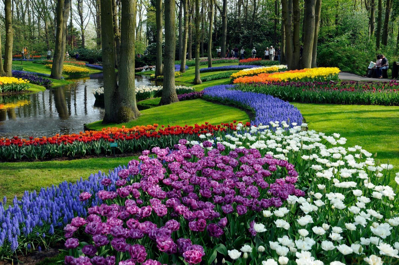 A walk in keukenhof netherlands the most beautiful spring garden a walk in keukenhof netherlands the most beautiful spring garden in the world izmirmasajfo