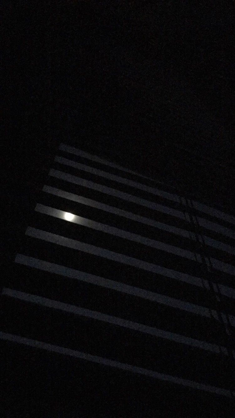 Too bad my phone couldn't capture the actual moonlight shining through my window