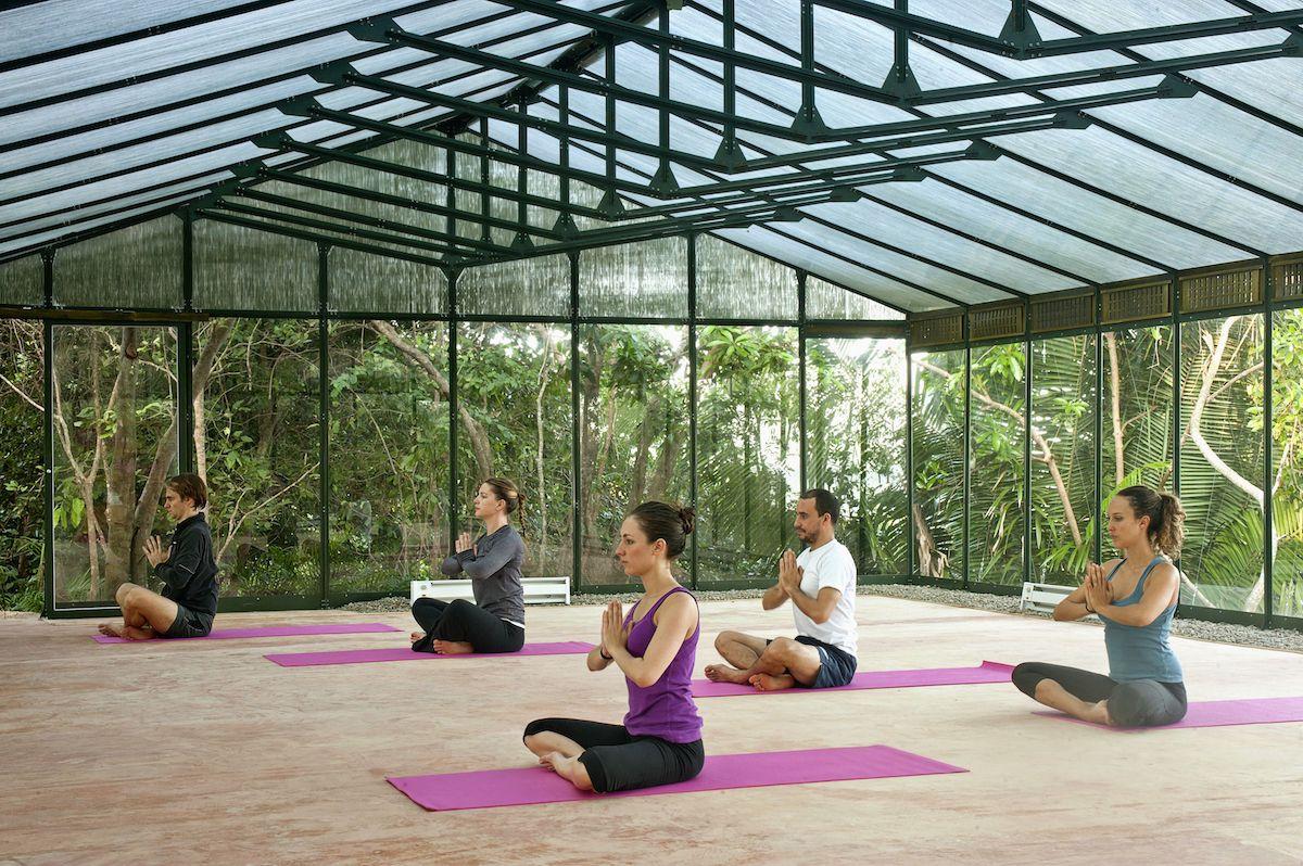 Convert the Manuella greenhouse into a yoga studio with flooring ...