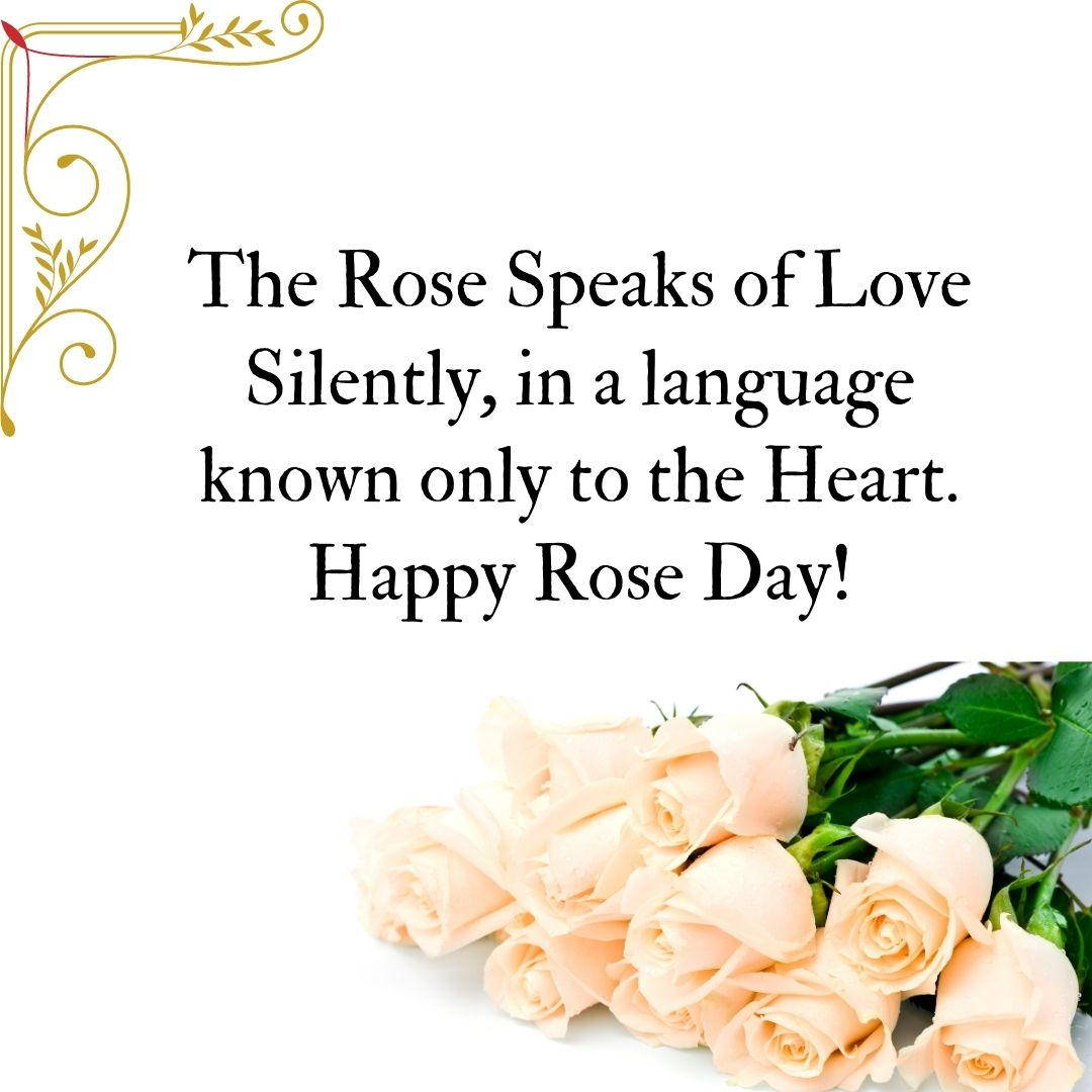 8uhb Rose Day Status For Girlfriend 2021 Rose Day Status For Boyfriend 2021 Rose Day Status In 2021 Rose Day Pic Are You Happy This Is Us Quotes