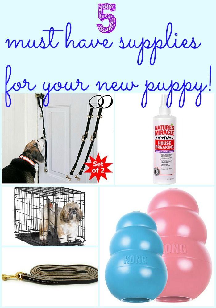 Dog Grooming Supplies Au