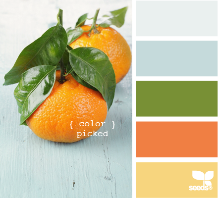 Kitchen color palette idea...