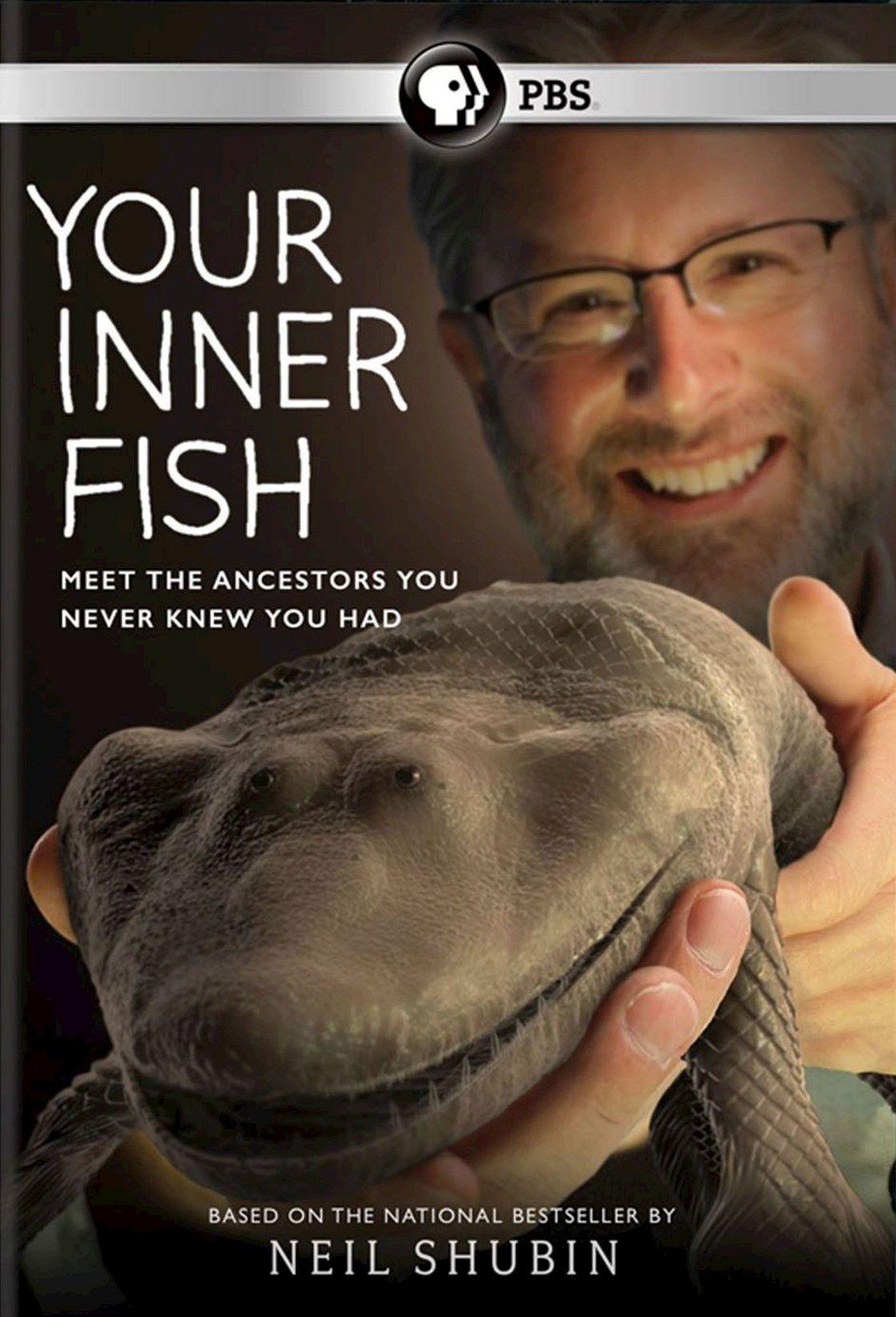 Your Inner Fish (Widescreen)