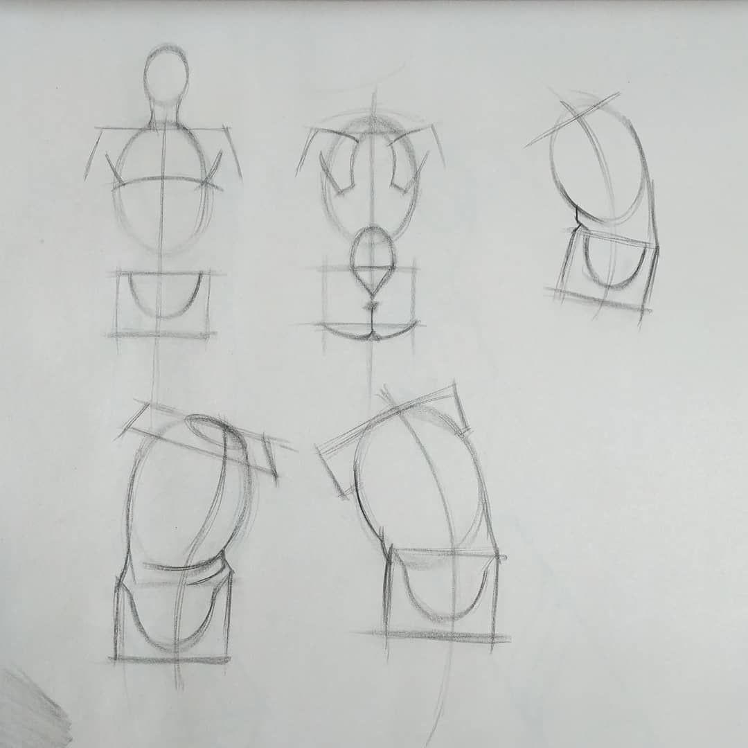 Drawing The Human Figure Tips For Beginners Figure Drawing