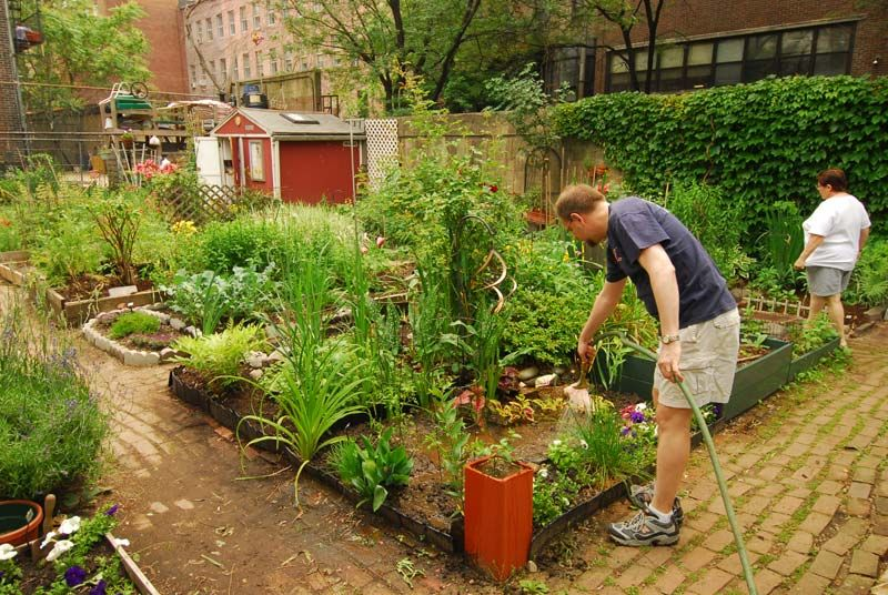 Clinton Community Garden, Located Just Two Blocks From Times Square, NYC.