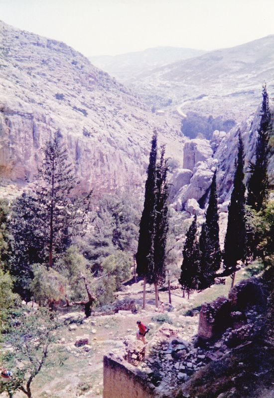 Nahal Perat (Wadi Qelt)  Anatoth - Jericho 1989