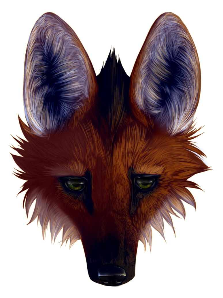 Maned Wolf By Lunamach Maned Wolf Creature Art Fox Art