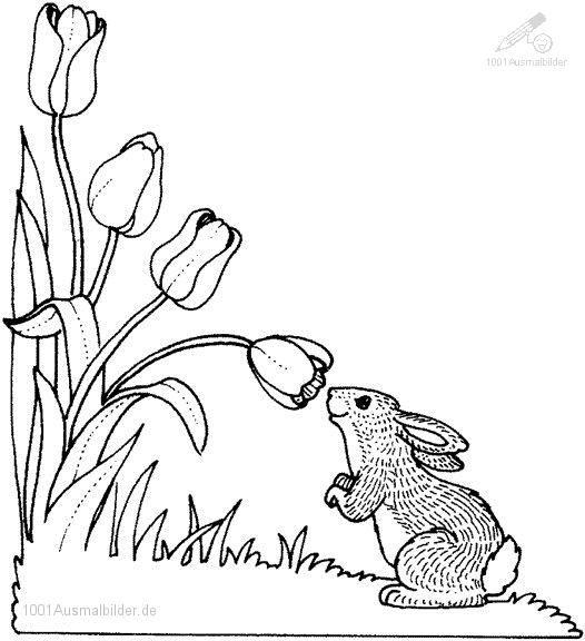 Ausmalbilder Fruhling Malvorlage Hase Malvorlagen Blumen