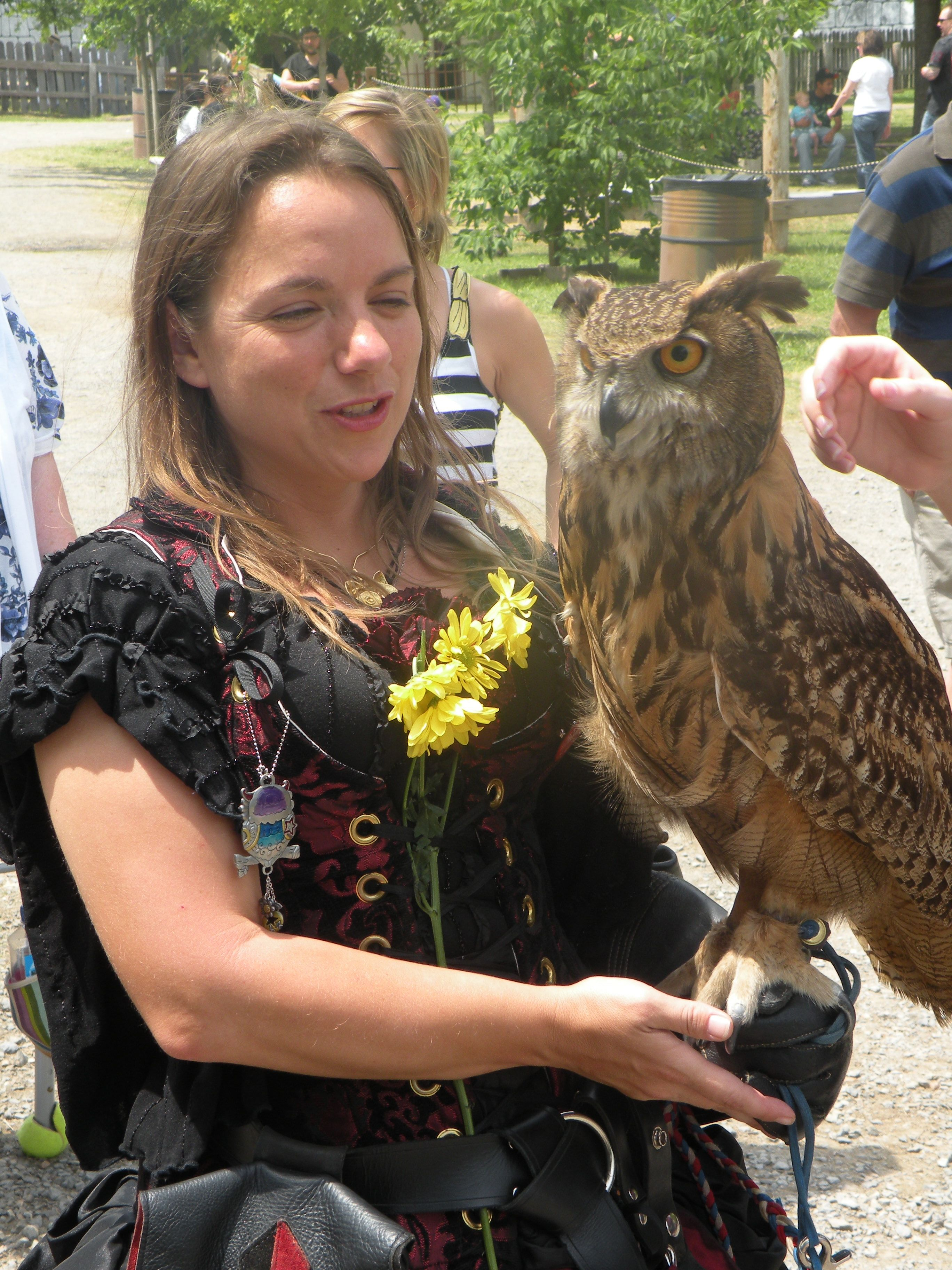 Owl and Trainer of Royal Gauntlet Birds of Prey at Renaissance Faire, The Castle at Muskogee, Muskogee, Oklahoma photo by kristin nador