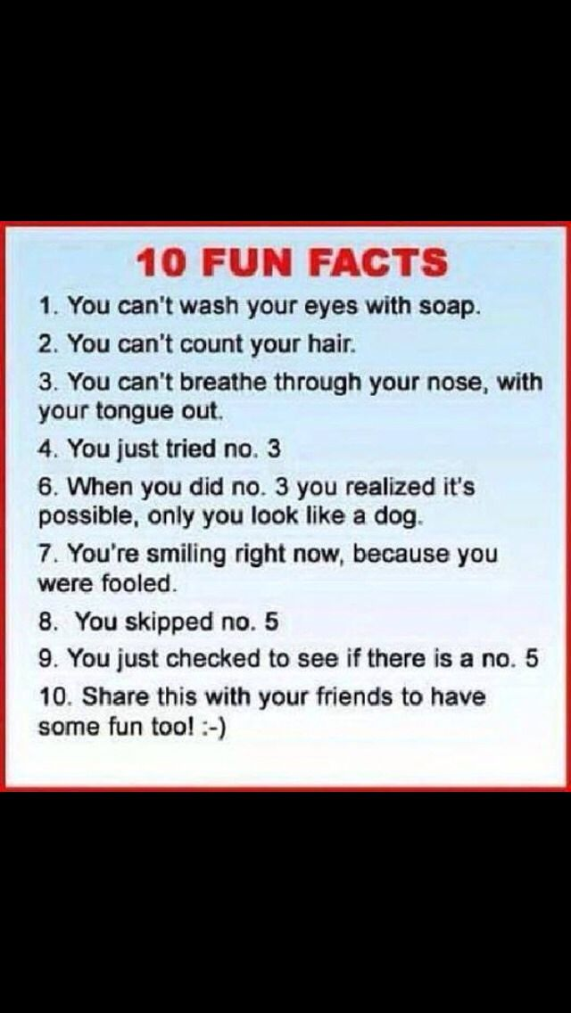 100 Questions To Ask Siri Have Fun Things To Ask Siri Funny Questions Funny Riddles With Answers