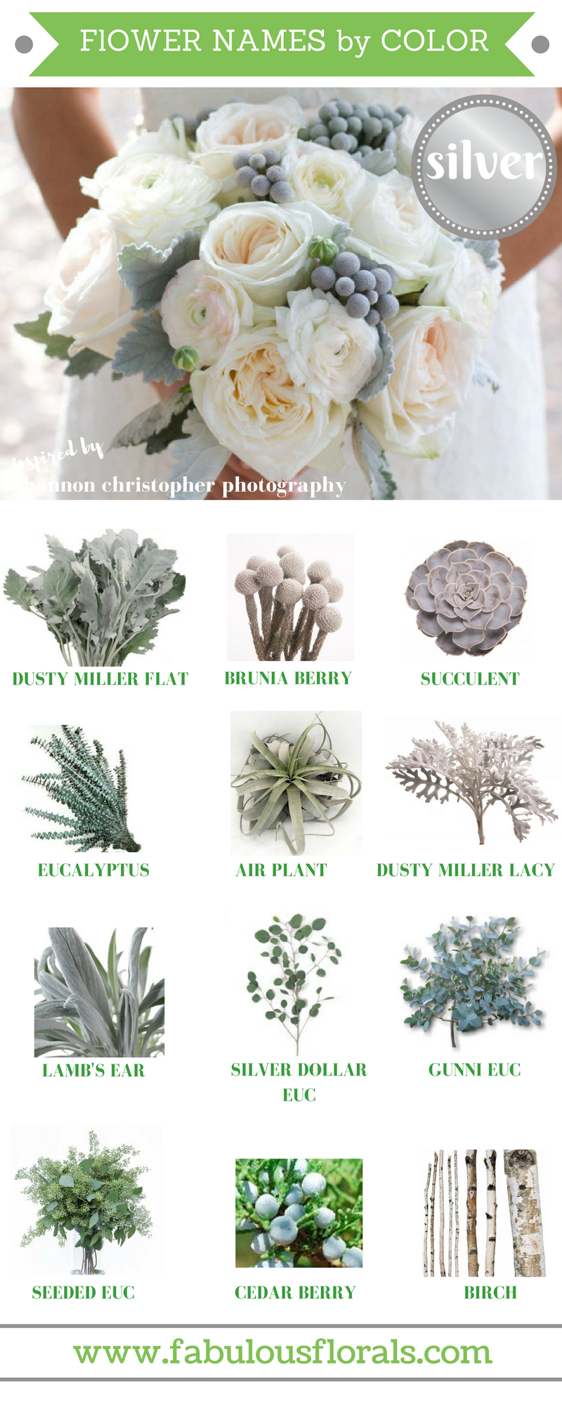 FLOWER NAMES BY COLOR! 2017 wedding trends! . Your #1 source for wholesale DIY wedding flowers! #silver #diyflowers #weddingflowers #silverwedding #weddingtrends #silverflowers #greywedding #greyflowers #flowernames #diywedding #weddingcolors #flowercolors
