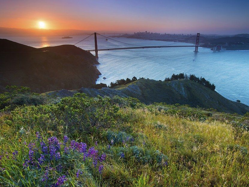 What Not to Do in San Francisco San francisco travel