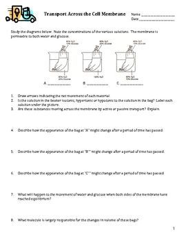 This worksheet was written for my Biology I class. It is a 4 page ...