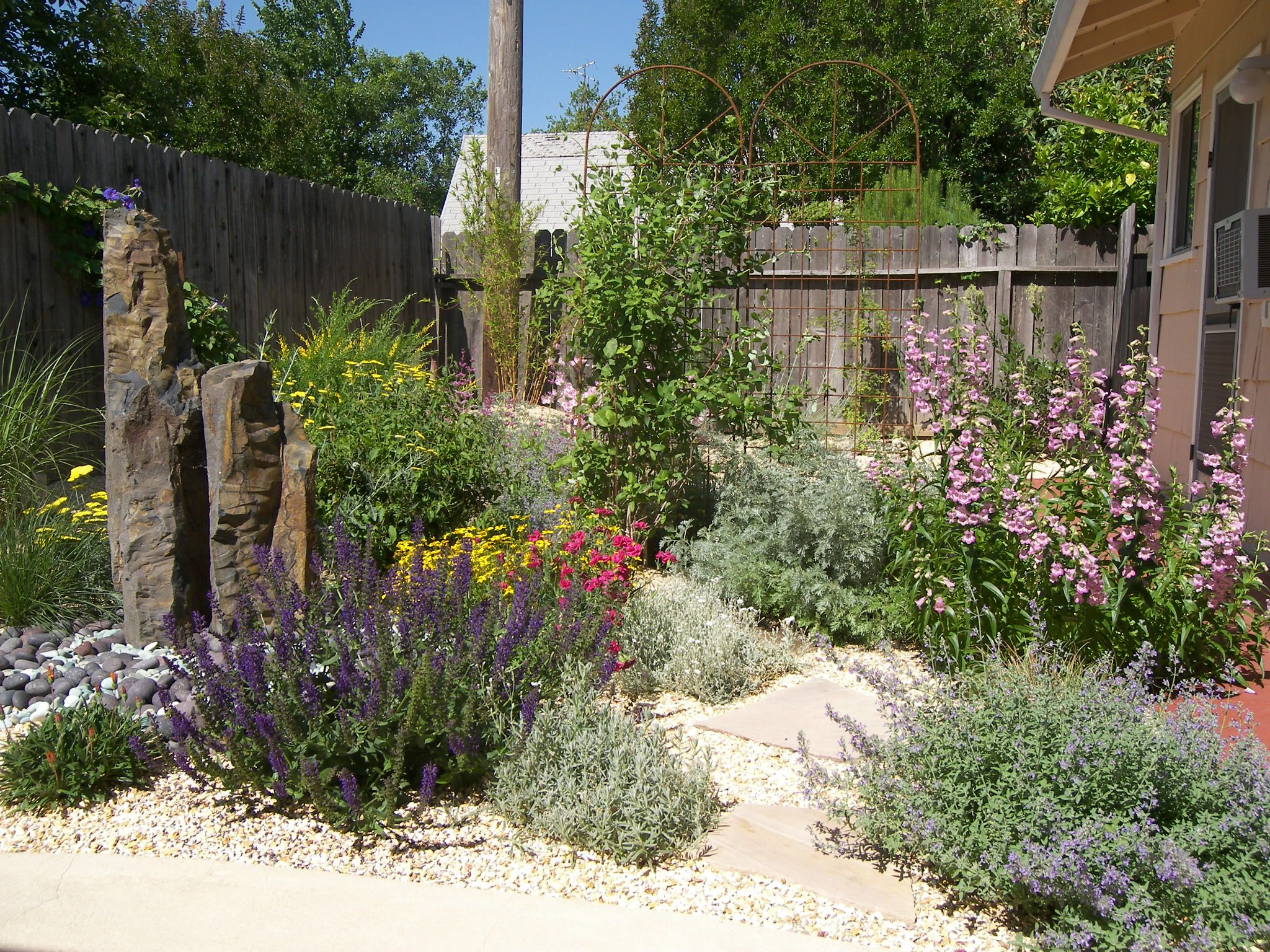 Drought Tolerant And Habitat Friendly