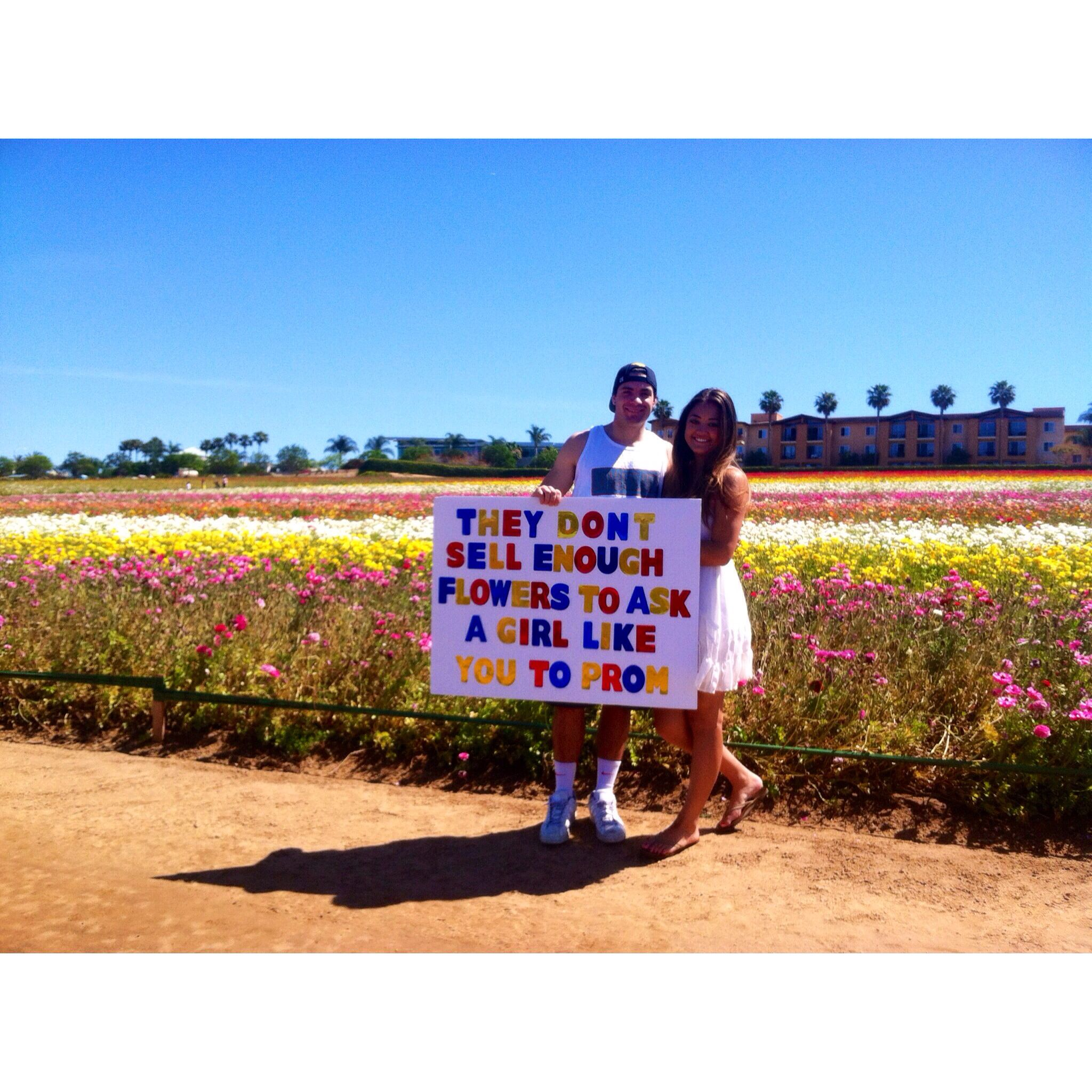 prom proposal at the flower fields ask me pinterest proposals